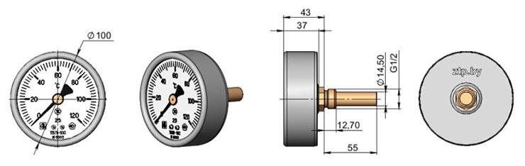 Термометр биметаллический показывающий ТБП100Т3